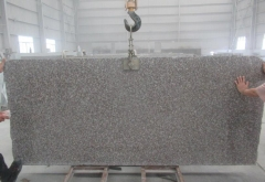 G664 Big Slabs 5cm 2400up x 1100up Polished